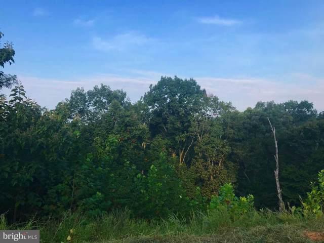 9608 Woodland Road, NEW MARKET, MD 21774 (#MDFR253158) :: Viva the Life Properties