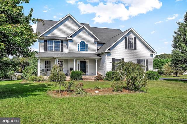 17884 Meadow Drive, BRIDGEVILLE, DE 19933 (#DESU147802) :: Jim Bass Group of Real Estate Teams, LLC