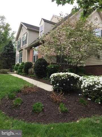 43265 Somerset Hills Terrace, ASHBURN, VA 20147 (#VALO394492) :: Revol Real Estate