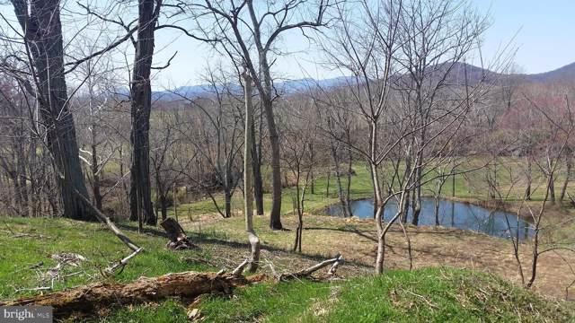 Tiger Valley, WASHINGTON, VA 22747 (#VARP106866) :: Pearson Smith Realty