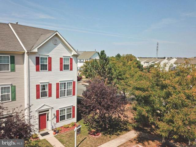 44148 Appalachian Vista Terrace, ASHBURN, VA 20147 (#VALO394600) :: The Greg Wells Team
