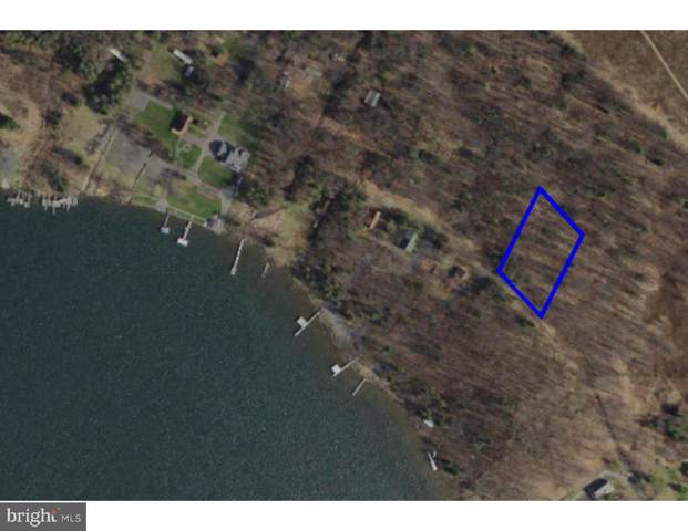 Lot 14 - Lake Ridge Heights, MOUNT STORM, WV 26739 (#WVGT102992) :: Pearson Smith Realty