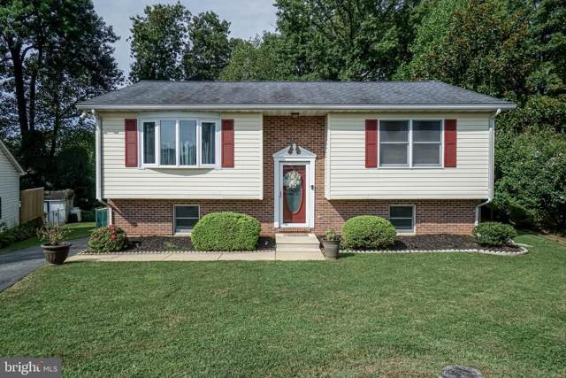 211 Bruce Court, ELKTON, MD 21921 (#MDCC166068) :: The Gus Anthony Team