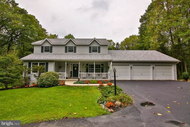 6408 Chestnut Hill Road, COOPERSBURG, PA 18036 (#PALH112410) :: Ramus Realty Group