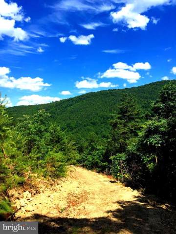 0 Lucas Hollow Road, STANLEY, VA 22851 (#VAPA104758) :: AJ Team Realty