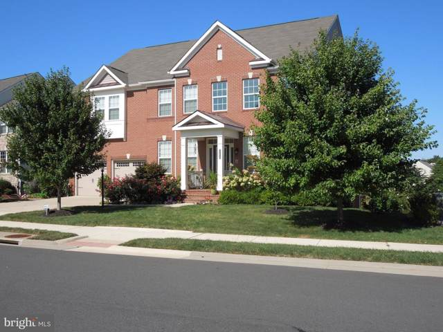 22849 Emerald Chase Place, ASHBURN, VA 20148 (#VALO394836) :: AJ Team Realty