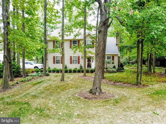 619 Chesapeake Drive, STEVENSVILLE, MD 21666 (#MDQA141498) :: RE/MAX Plus