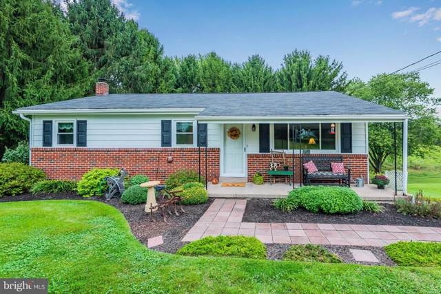 40 Texaseastern Road, SHERMANS DALE, PA 17090 (#PAPY101352) :: The Joy Daniels Real Estate Group