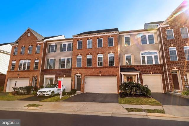 21264 Park Grove Terrace, ASHBURN, VA 20147 (#VALO394896) :: Colgan Real Estate