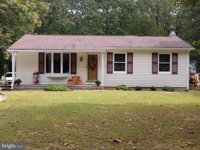 406 Stillman Avenue, BRIDGETON, NJ 08302 (#NJCB123014) :: Colgan Real Estate