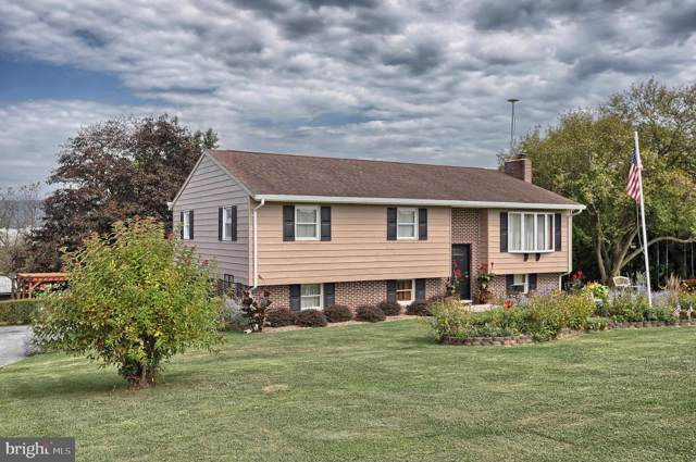 437 Chestnut Hill Road, FREDERICKSBURG, PA 17026 (#PALN109000) :: Ramus Realty Group