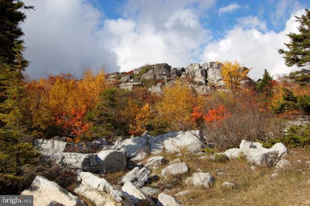 Lot 50 Dolly Sods Retreat, MOUNT STORM, WV 26739 (#WVGT102996) :: Colgan Real Estate