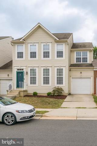 20955 Duryea Terrace, ASHBURN, VA 20147 (#VALO394990) :: The Greg Wells Team