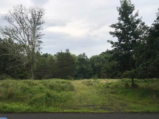 447 Spring Hill Road, SKILLMAN, NJ 08558 (#NJSO112300) :: Tessier Real Estate