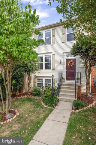 132 Shirley Square SE, LEESBURG, VA 20175 (#VALO395024) :: Advon Group