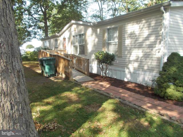37626 West Shady Drive #46205, SELBYVILLE, DE 19975 (#DESU148324) :: The Dailey Group