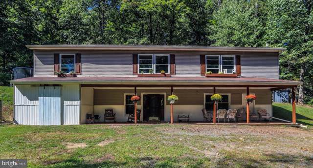 2 Sand Pit Lane, DUNCANNON, PA 17020 (#PAPY101374) :: Teampete Realty Services, Inc