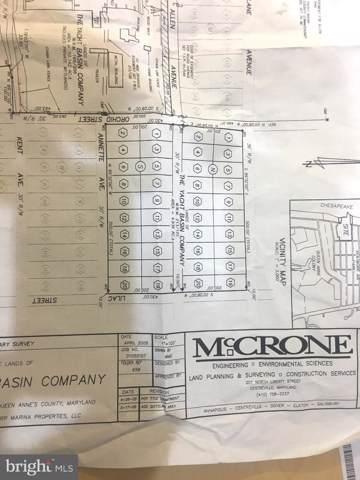 Lots 1-20 Block N Lots 1-20 Block S, STEVENSVILLE, MD 21666 (#MDQA141526) :: Circadian Realty Group