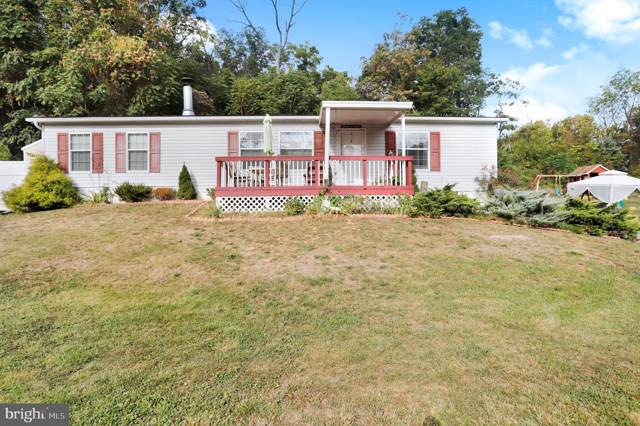 15301 Skyline Drive, GREENCASTLE, PA 17225 (#PAFL168510) :: Bruce & Tanya and Associates