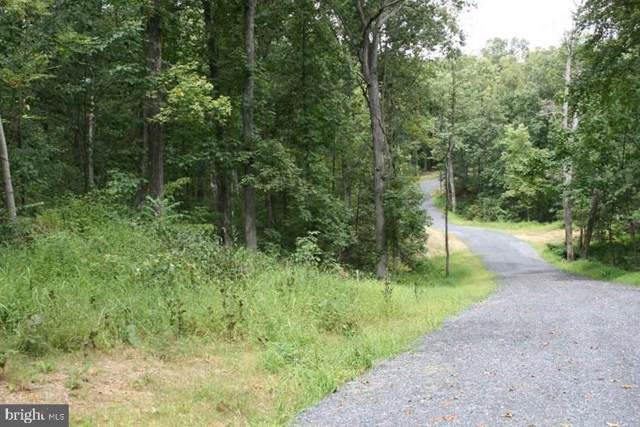 NW Armel Road, WHITE POST, VA 22663 (#VAFV153196) :: ExecuHome Realty