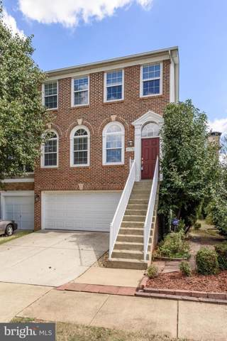 20776 Bridalveil Falls Terrace, STERLING, VA 20165 (#VALO395184) :: The Licata Group/Keller Williams Realty