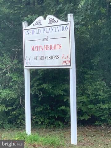 105 Saint Julian Court, SPOTSYLVANIA, VA 22551 (#VASP216412) :: Great Falls Great Homes