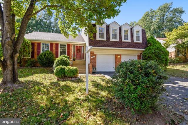 6130 Wicklow Drive, BURKE, VA 22015 (#VAFX1090794) :: AJ Team Realty