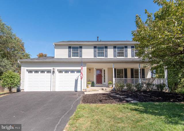 20600 Preakness Court, ASHBURN, VA 20147 (#VALO395254) :: Shamrock Realty Group, Inc