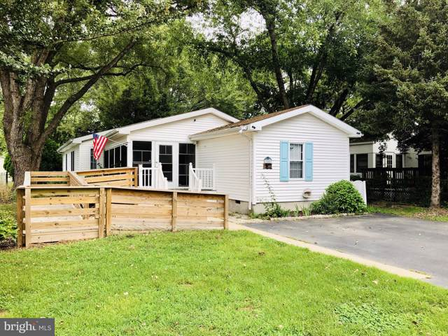 33507 Buttercup Street, LEWES, DE 19958 (#DESU148468) :: RE/MAX Coast and Country