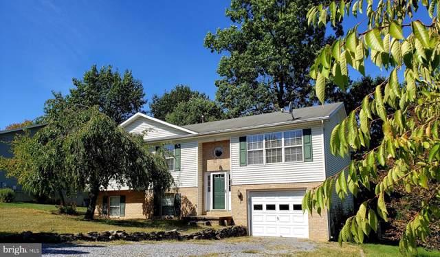 111 Rebecca Drive, WINCHESTER, VA 22602 (#VAFV153228) :: Arlington Realty, Inc.
