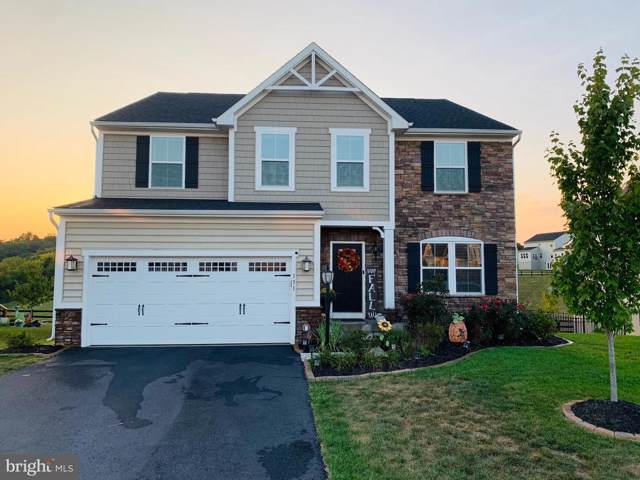 131 Cabbage White Drive, LAKE FREDERICK, VA 22630 (#VAFV153230) :: The Miller Team