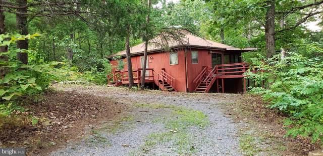 107 Cottonwood Drive, MOUNT JACKSON, VA 22842 (#VASH117282) :: The Redux Group