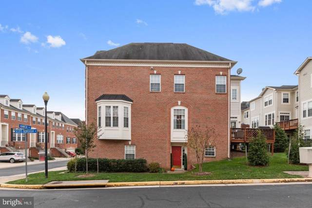 20351 Hawick Terrace, STERLING, VA 20165 (#VALO395338) :: Labrador Real Estate Team