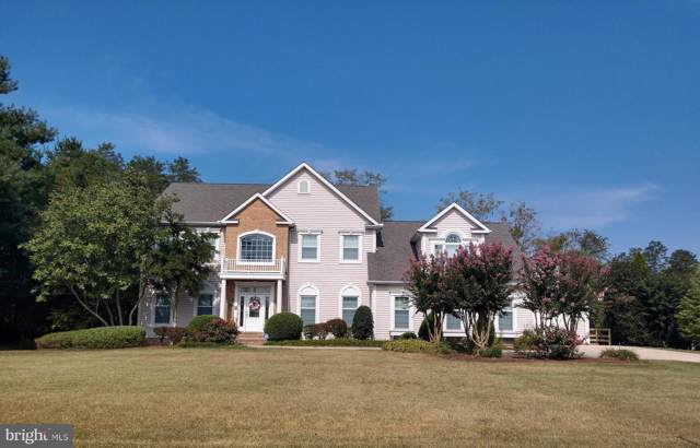 28452 Waterview Drive, EASTON, MD 21601 (#MDTA136488) :: AJ Team Realty