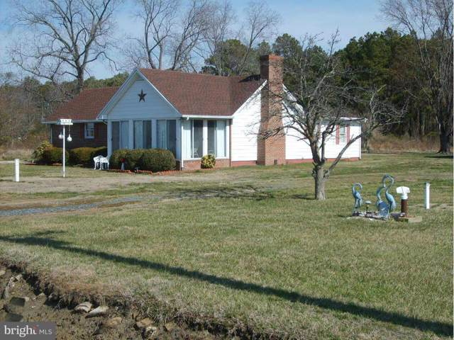 2625 Hoopers Island Road, FISHING CREEK, MD 21634 (#MDDO124278) :: RE/MAX Coast and Country