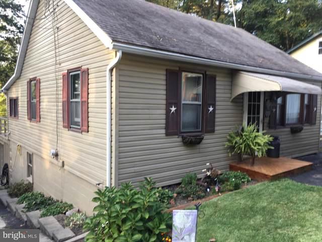 160 W Lake Drive, PINE GROVE, PA 17963 (#PASK127958) :: Ramus Realty Group