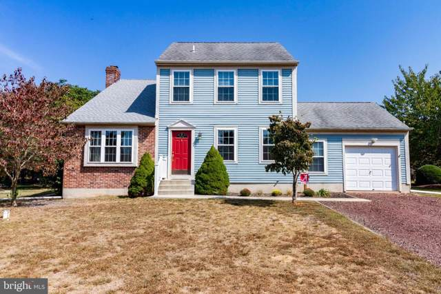 1027 Terns Landing Road, ELMER, NJ 08318 (#NJSA135846) :: Talbot Greenya Group
