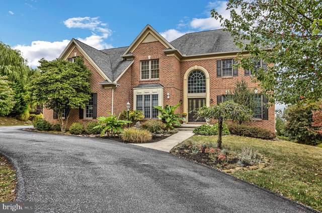 504 Halyard Way, ENOLA, PA 17025 (#PACB117826) :: Liz Hamberger Real Estate Team of KW Keystone Realty