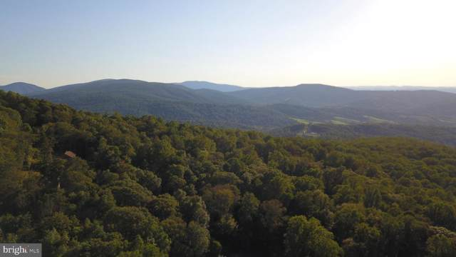 99 Alpine Drive, FRONT ROYAL, VA 22630 (#VAWR138226) :: Viva the Life Properties