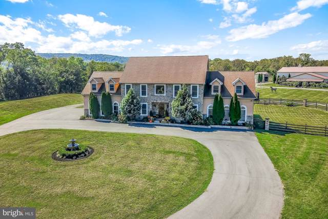 481 Red Corner Road, DOUGLASSVILLE, PA 19518 (#PABK348438) :: Dougherty Group