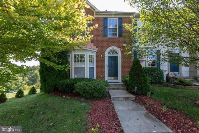 175 Fiona Way, BRUNSWICK, MD 21758 (#MDFR253978) :: ExecuHome Realty