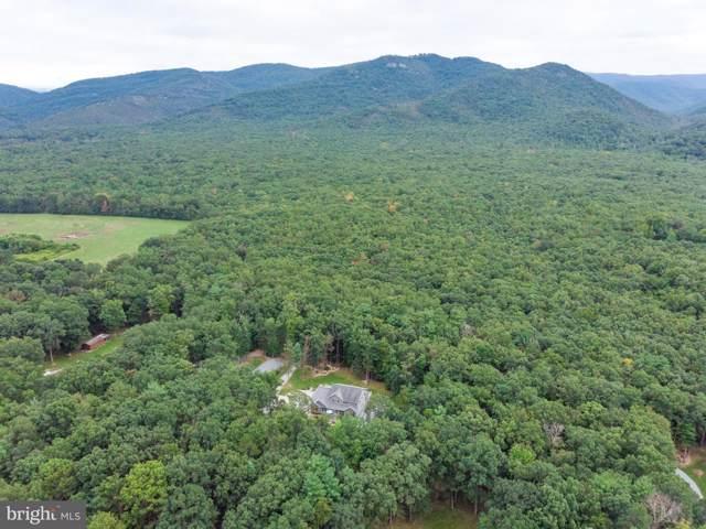 4116 Brown Mountain Lane, ELKTON, VA 22827 (#VARO100954) :: The Licata Group/Keller Williams Realty