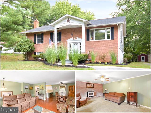 7327 Old Middletown Road, MIDDLETOWN, MD 21769 (#MDFR254060) :: The Maryland Group of Long & Foster