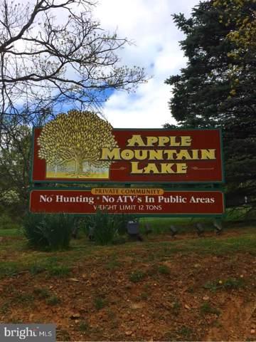 King David Drive, LINDEN, VA 22642 (#VAWR138258) :: Colgan Real Estate