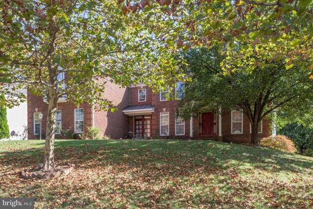 22582 Forest Run Drive, ASHBURN, VA 20148 (#VALO395694) :: Tom & Cindy and Associates