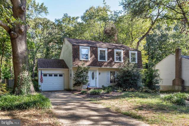 635 Bay Green Drive, ARNOLD, MD 21012 (#MDAA414662) :: The Miller Team
