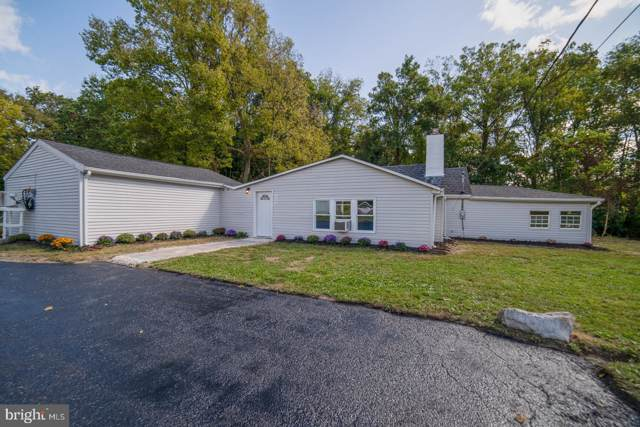 425 Nyes Road, HUMMELSTOWN, PA 17036 (#PADA115234) :: Teampete Realty Services, Inc