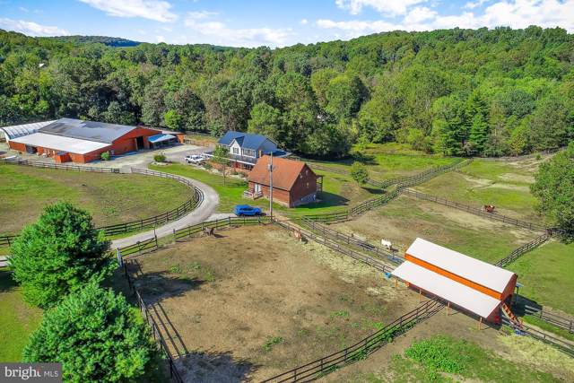 10782 Lucky Road, FELTON, PA 17322 (#PAYK125942) :: The Joy Daniels Real Estate Group