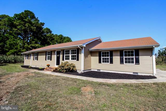 23330 Benton Road, DEAL ISLAND, MD 21821 (#MDSO102734) :: The Miller Team