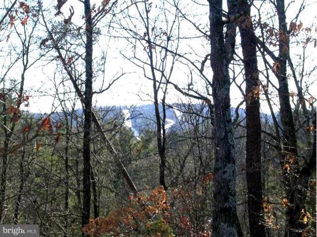 Lot # 215 Stuart Drive, BASYE, VA 22810 (#VASH117370) :: Network Realty Group